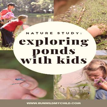 Exploring Ponds with Kids Nature Study: Exploring Ponds with Kids - all kinds of fun, interactive a