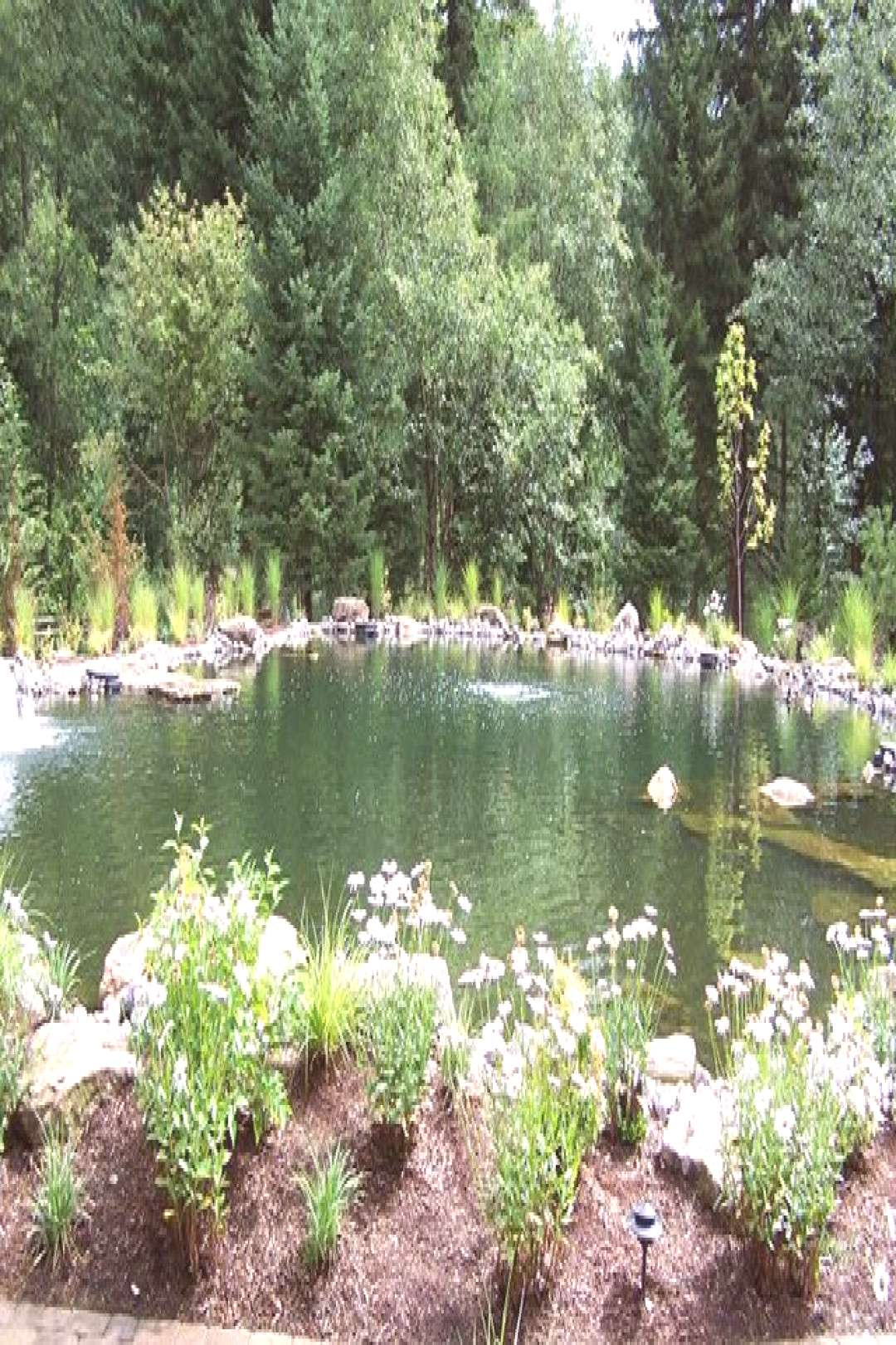 Ponds add a nice look to any garden and installation doesn't have to be complicated. You can even